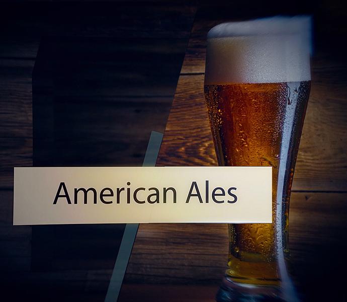 American Ales Course